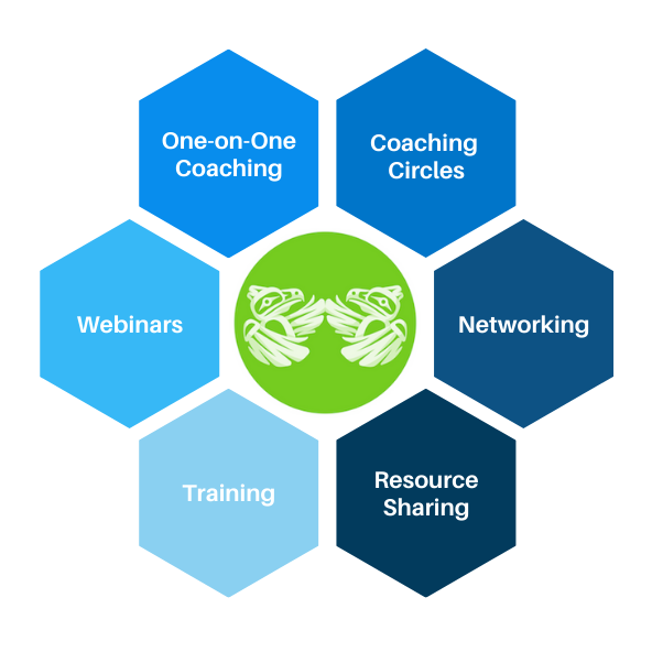 FNPSS Mentorship Network Graphic - with logo